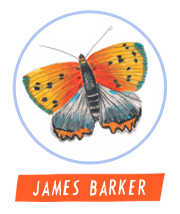 HiFest - James Barker