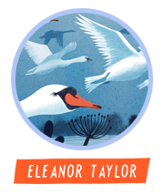 HiFest - Eleanor Taylor
