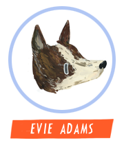 HiFest - Evie Adams