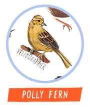 pollyfern_av