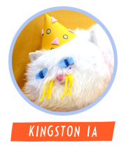 kingstonia_av